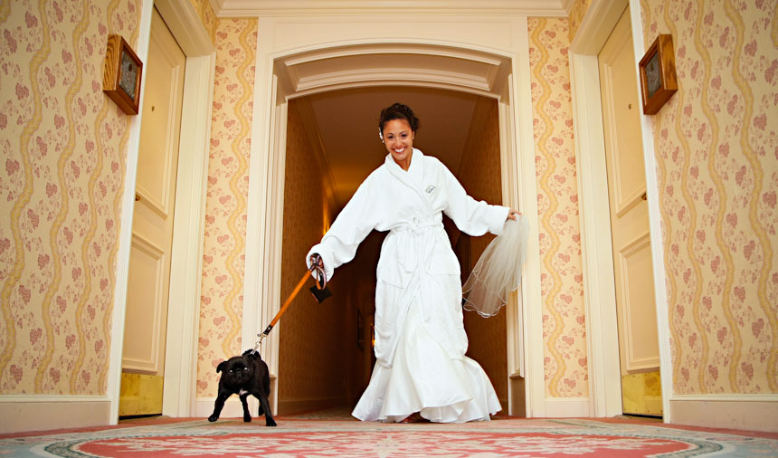 vancouver wedding photography bride runs down hallway of fairmont hotel with her dog in Whistler BC